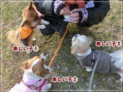 CIMG4685.jpg