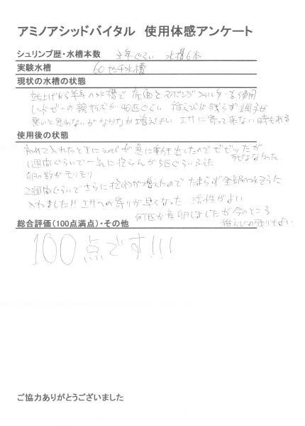 amino000011.jpg