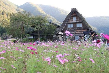 shirakawa2_20141012121020b4a.jpg