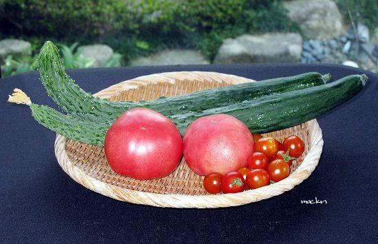 トマト&キウリ