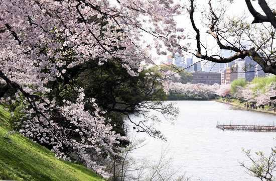 福岡城址・舞鶴公園