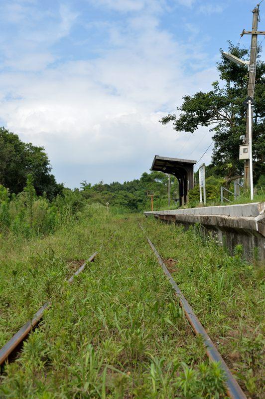 鹿児島 指宿枕崎線の水成川駅を低位置から撮ってみた