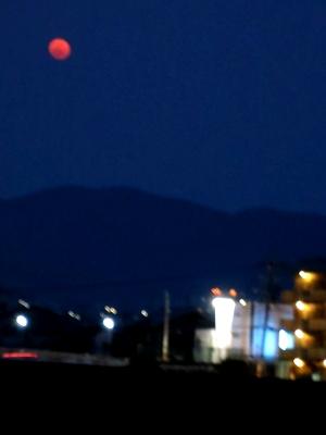 赤い月1403