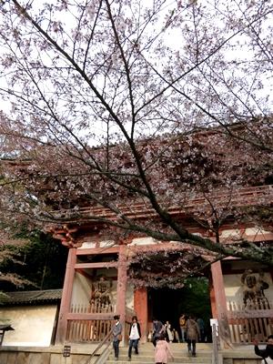 醍醐寺1404