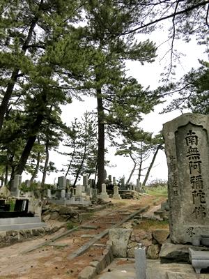 丹後墓参1405