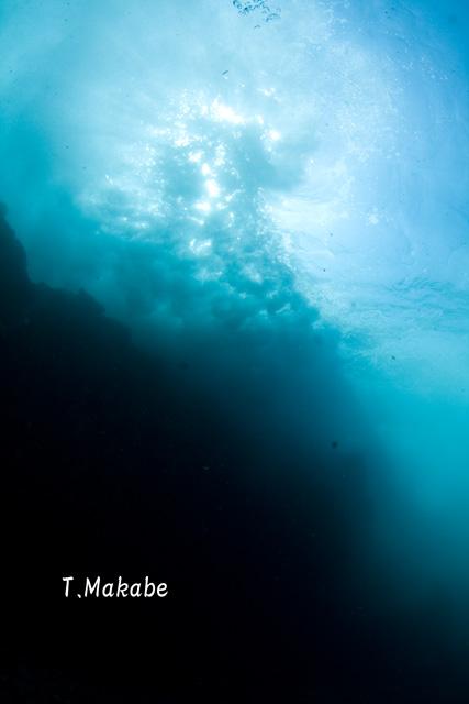 伊豆海洋公園・岸にうちつける波