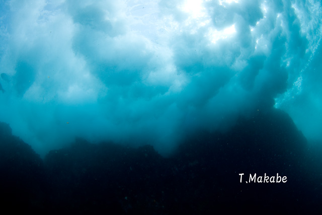 伊豆海洋公園・岸に打ち付け砕ける波