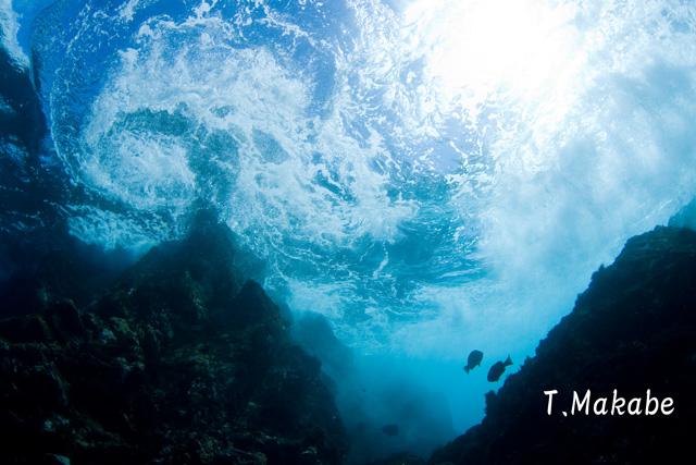 伊豆海洋公園の渦潮