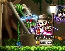 Maple12387a.jpg