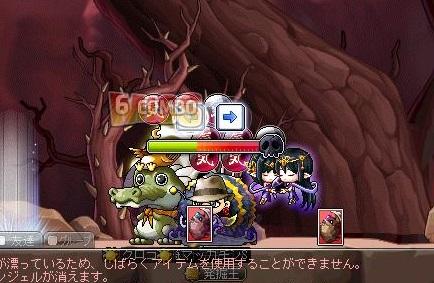 Maple12435a.jpg