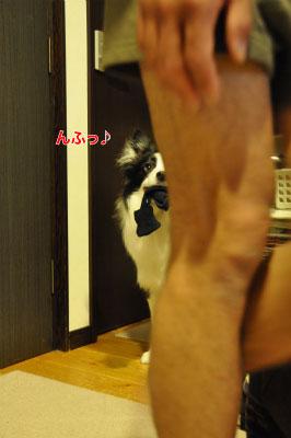 20140421-kut01.jpg