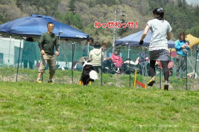 201405-wan-chi02.jpg