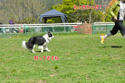 201405-wan-chi06.jpg