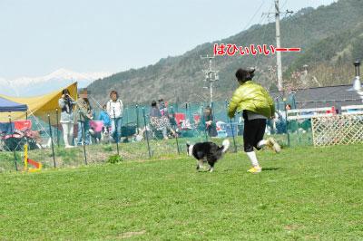 201405-wan-chi07.jpg