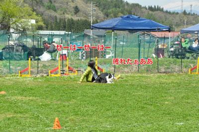 201405-wan-chi09.jpg