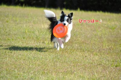 20140518pho-13.jpg