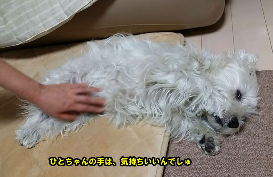 20140919_164811.jpg