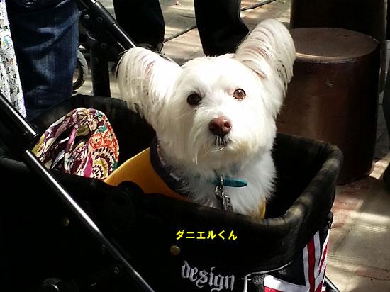 20140921_105143.jpg
