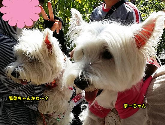 20140921_105600.jpg