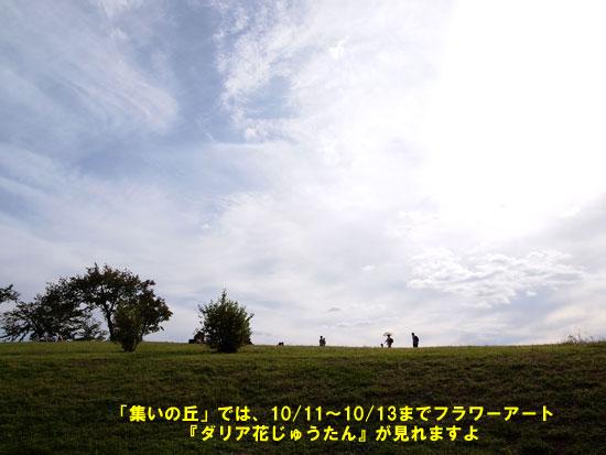 PA047839.jpg