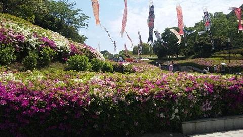 140504 つつじ祭り公園