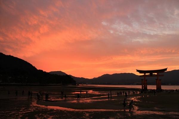smiyajima01.jpg