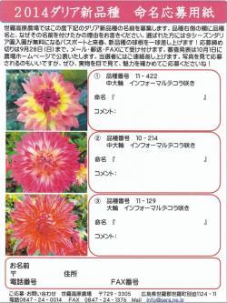 daria_convert_20141001072030.jpg