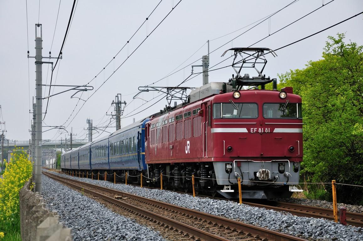 2014.04.29 1116_56(2) 新白岡~久喜 試9501レ EF81 81+24系s