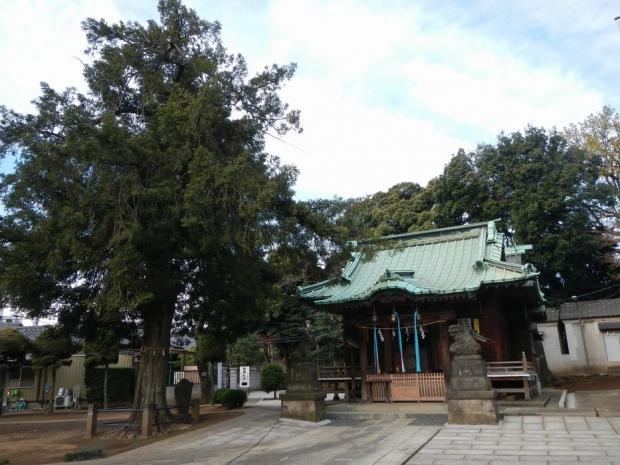 赤羽諏訪神社 (3)
