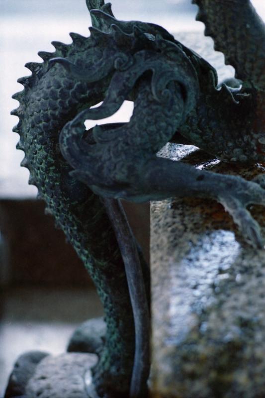 六角堂の龍