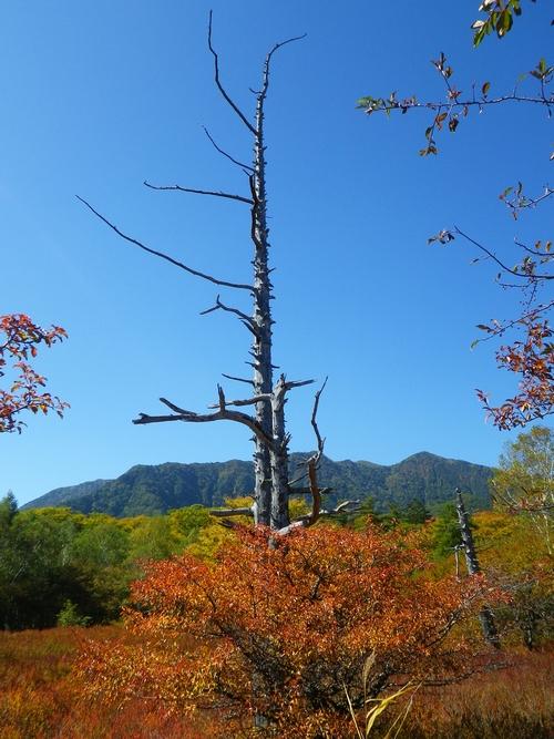 2014 9 27湯川 (14)