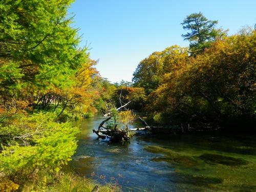 2014 9 27湯川 (18)
