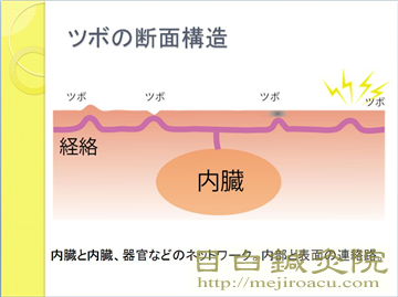 20140420つぼ講座資料1