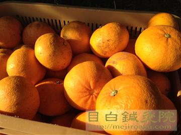 20140223甘夏草刈り51