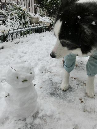 140208雪10