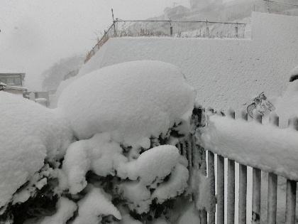 140208雪11