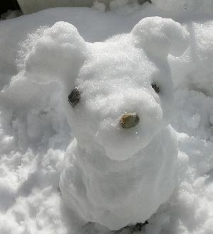140209雪2