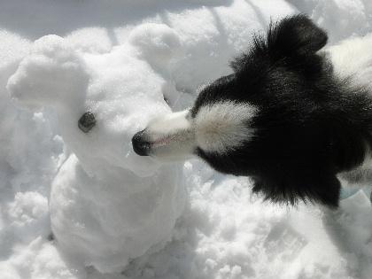 140209雪4