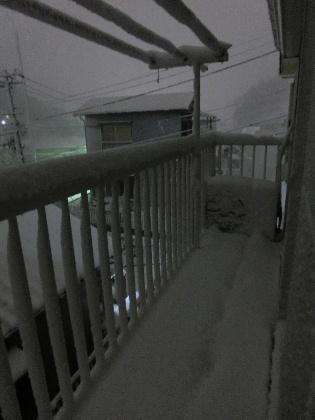 140215雪