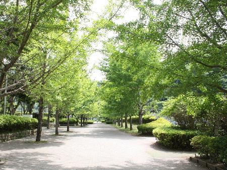 140519N公園
