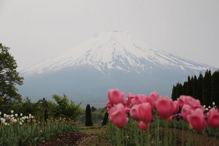 140525富士山1