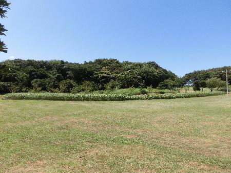 140805K公園