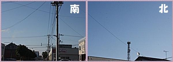 IMG_2374-tile.jpg