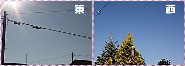 IMG_2375-tile.jpg