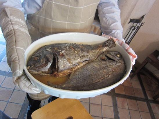 タイのように大きい魚