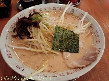 shiraganegi3.jpg