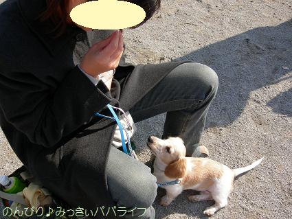 shitsuke200612.jpg