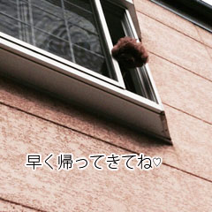 20148122a.jpg