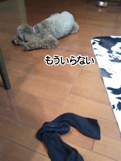 mame5.jpg
