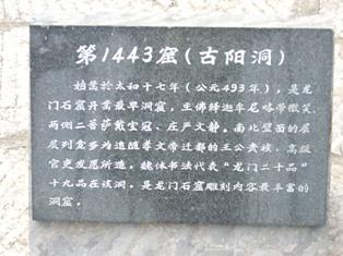 koyodo1.jpg